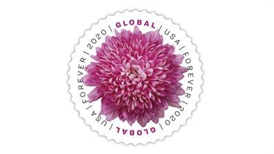united-states-2020-chrysanthemum-global-forever-stamp