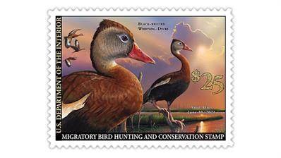 united-states-2020-federal-duck-stamp-black-bellied-whistling-ducks