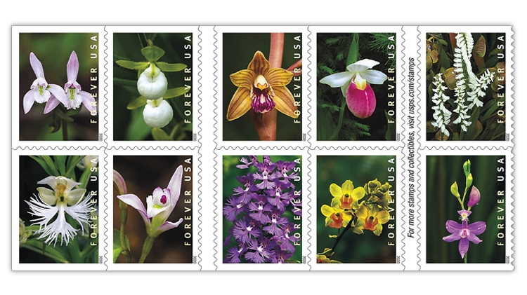 united-states-2020-wild-orchids-stamps