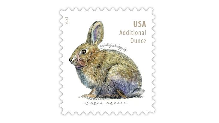 united-states-2021-brush-rabbit-additional-ounce-stamp