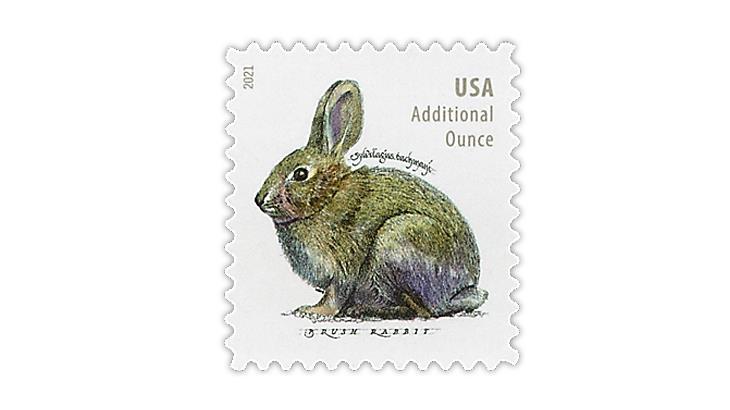 united-states-2021-brush-rabbit-stamp-scott-catalog-number