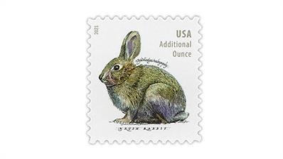 united-states-2021-brush-rabbit-stamp-scott-catalog-number