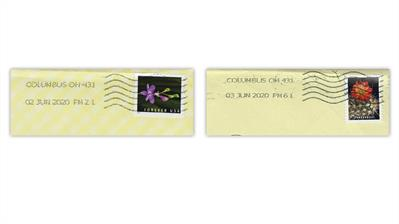 united-states-cactus-flowers-wild-orchids-stamps