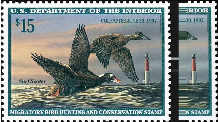 united-states-duck-stamp-broken-right-frameline-scott-rw63
