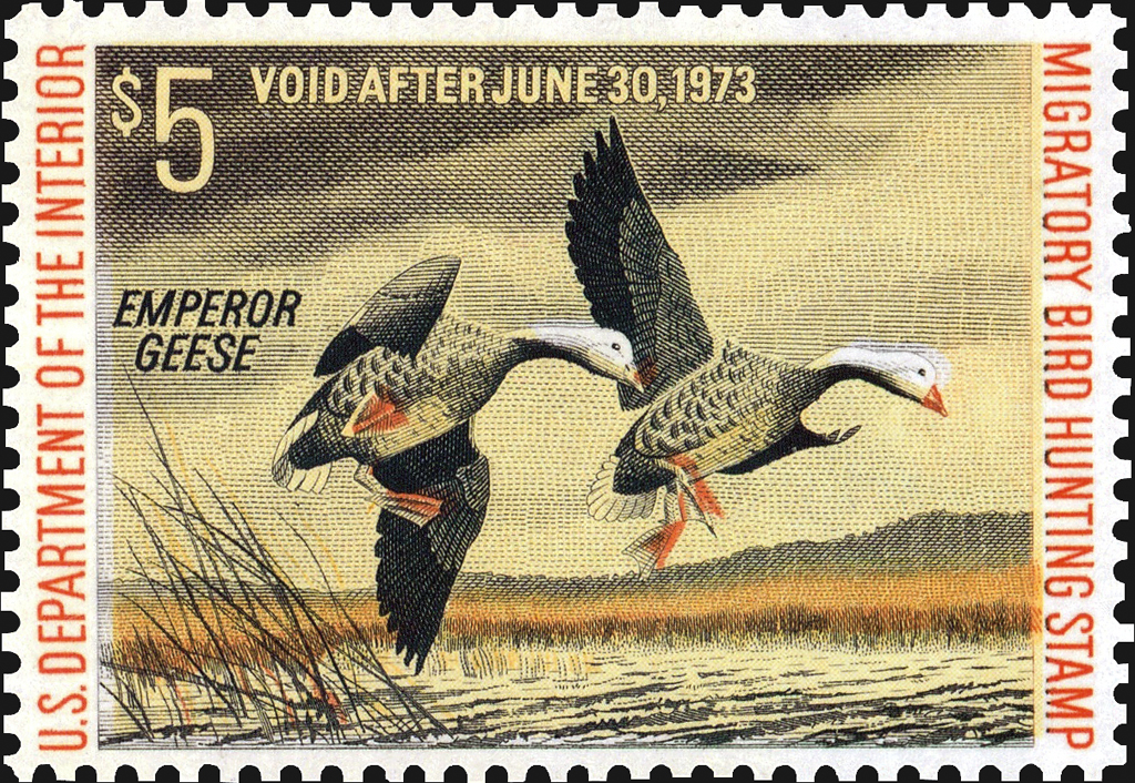 united-states-duck-stamp-color-shift-scott-rw39