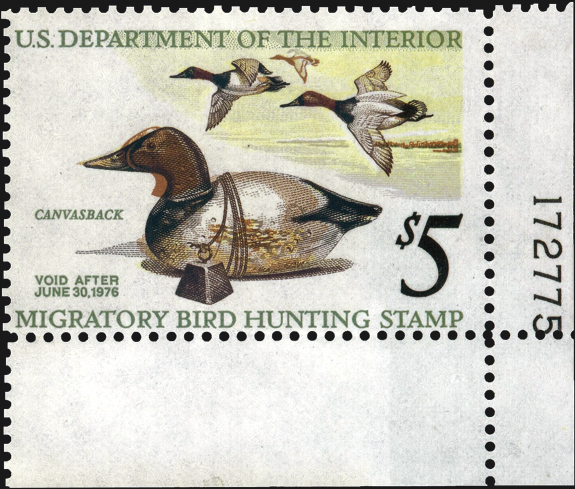 united-states-duck-stamp-color-shift-scott-rw42