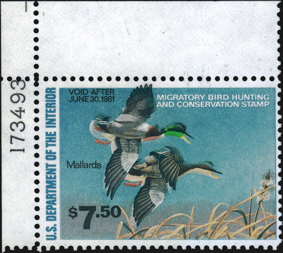 united-states-duck-stamp-color-shift-scott-rw47