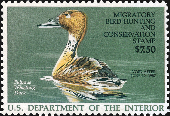 united-states-duck-stamp-color-shift-scott-rw53