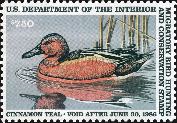 united-states-duck-stamp-pool-of-blood-color-shift-scott-rw52