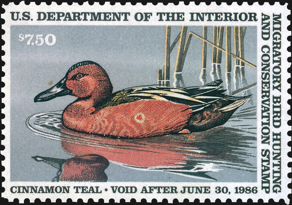 united-states-duck-stamp-shot-duck-color-shift-scott-rw52