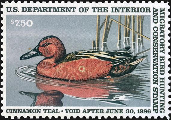 united-states-duck-stamp-shot-duck-color-shift-scott-rw52
