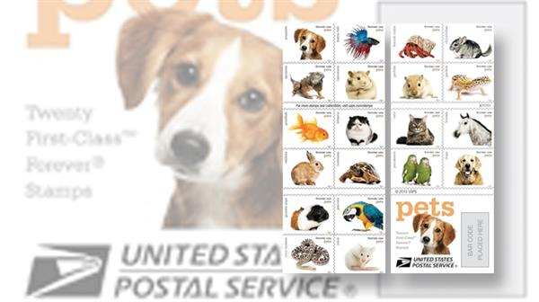 united-states-pets-stamps-first-day-covers-cachets