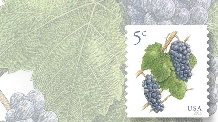 us-2016-grapes-bg