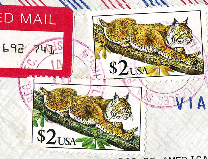 us-stamp-notes-expertizing-bobcat