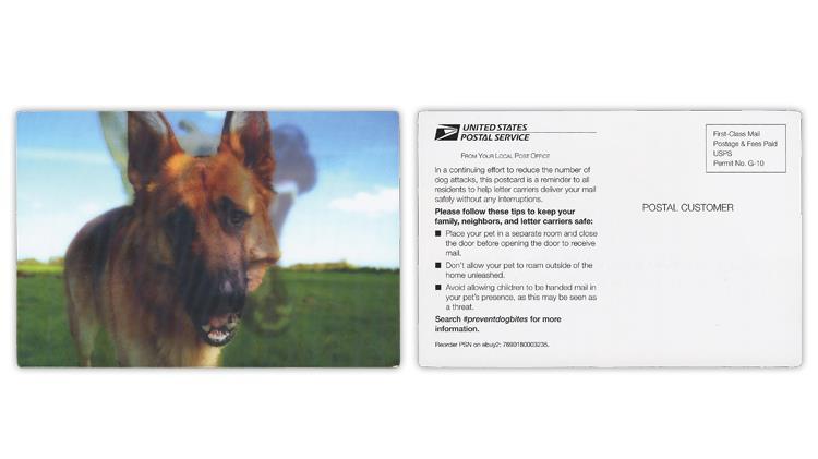 usps-preventing-dog-bites-card
