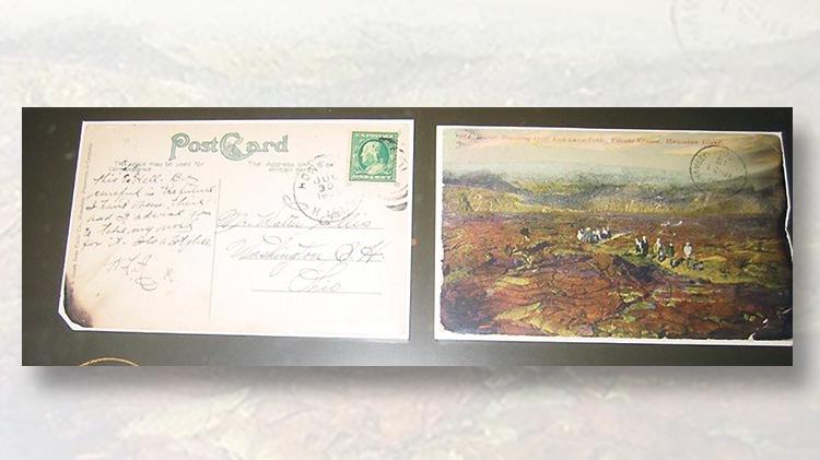 volcano-park-hawaii-stick-postcards
