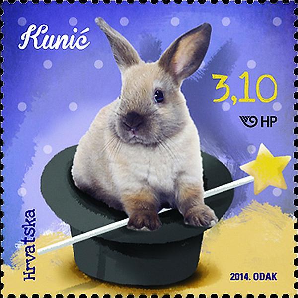 won-dm-rabbit-f3