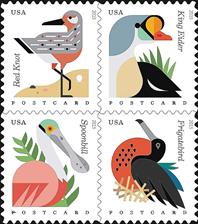 zne-cs-coastalbirds