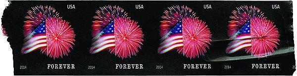 zne-cs-flag-f1