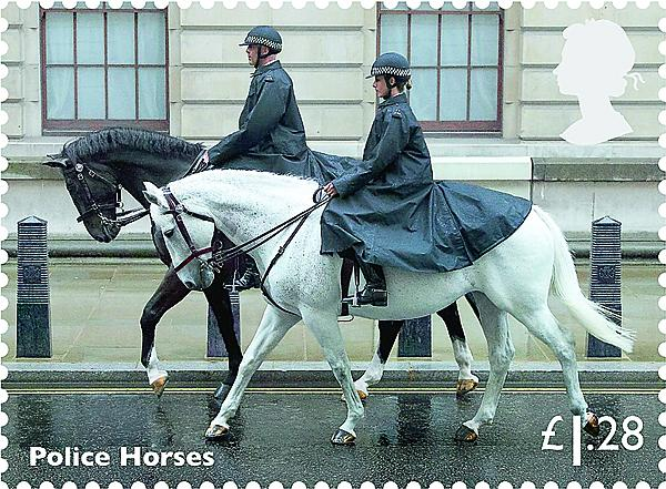 zne-dm-gb-horse5