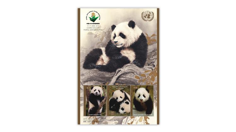 zne-dm-un-panda-f2-bg
