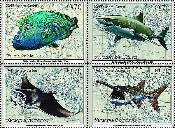 zne-dm-un-speciesfish-f3