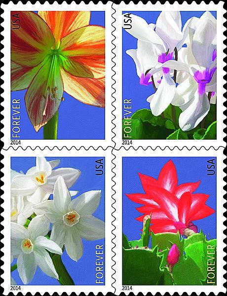 zne-jb-14art-flowers