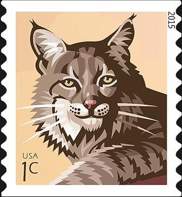 zne-mb-bobcat-2015