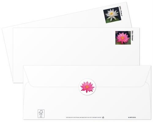 zne-mb-water-lilies-env